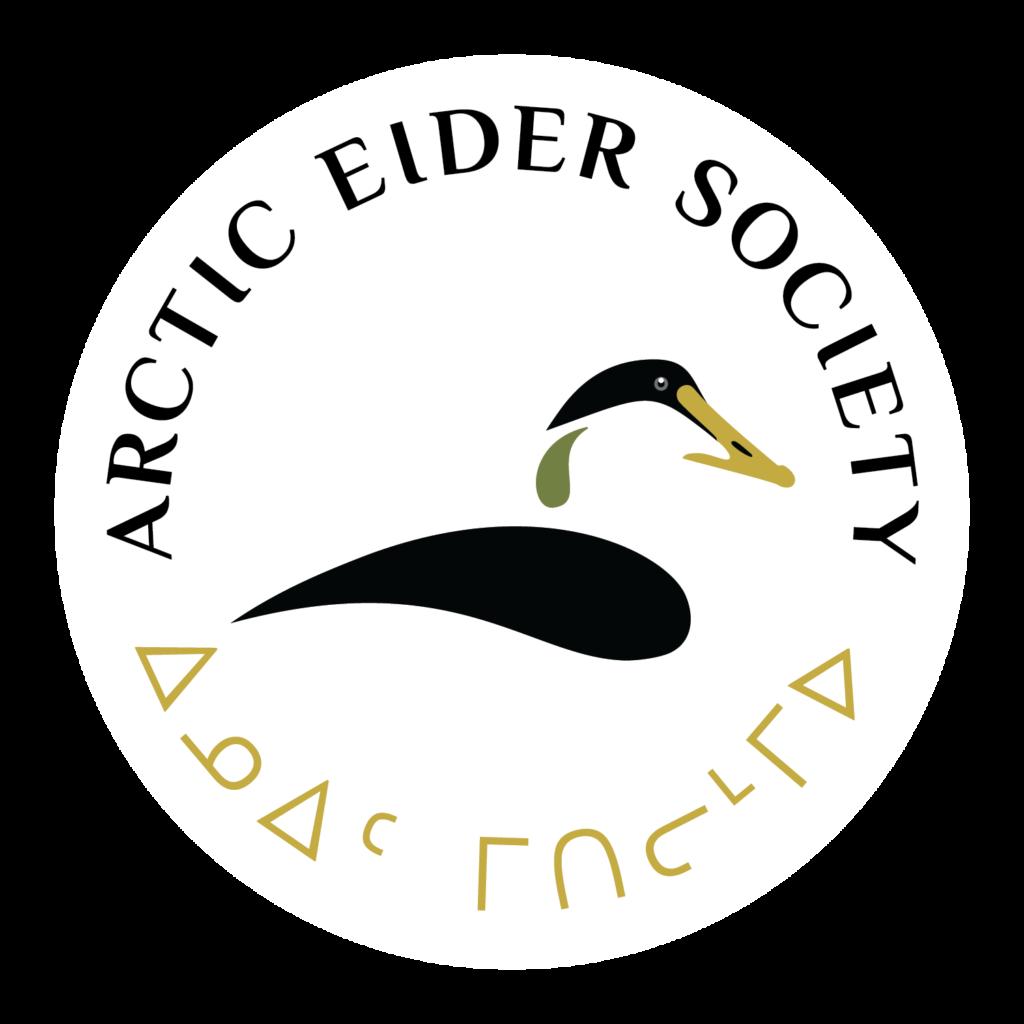 La société des eiders de l'Arctique