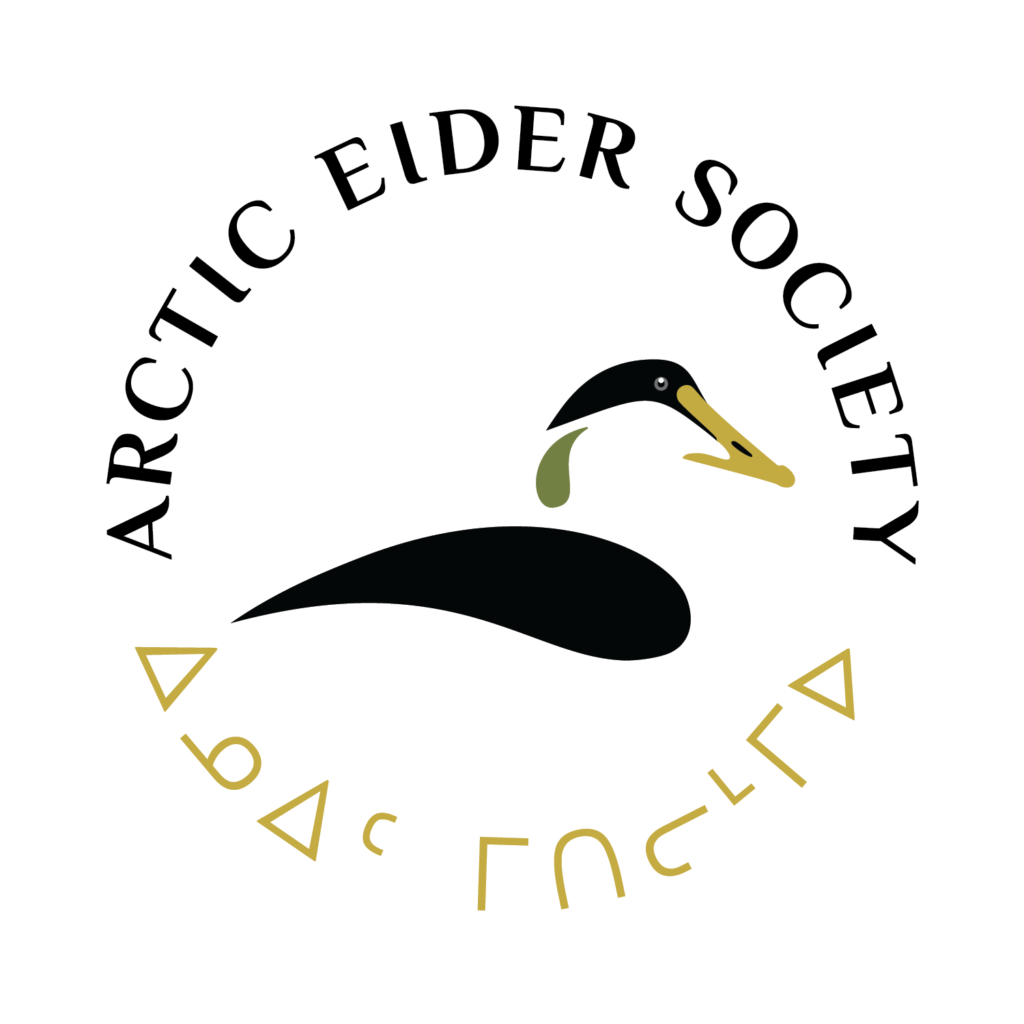 Arctic Eider Society